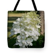 Panicled Hydrangea Tote Bag