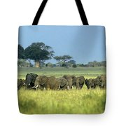 Panorama African Elephant Herd Endangered Species Tanzania Tote Bag