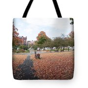 Panorama Of Taylor Park St Albans Vermont Tote Bag