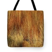 Panorama Winter Trees Color Tote Bag