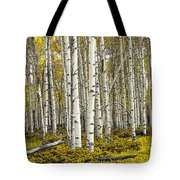 Panoramic Birch Tree Forest Tote Bag