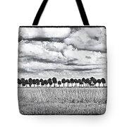 Panoramic Noir Tote Bag