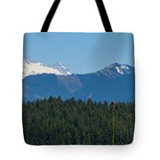 Panoramic Rainier Rt.25 Tote Bag