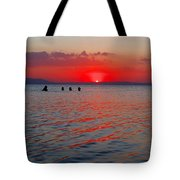 Panoramic Summer Sunset Tote Bag