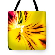 Pansy Flower 1 Tote Bag