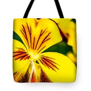 Pansy Flower 2 Tote Bag