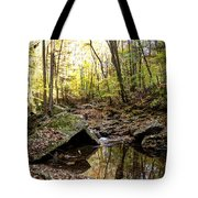 Panther Branch In Fall Tote Bag