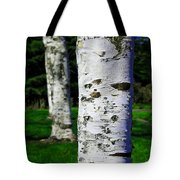 Paper Birch Trees Tote Bag