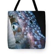 Paper Nautilus Port Phillip Bay Tote Bag