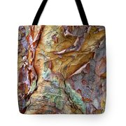 Paperbark Abstract Tote Bag
