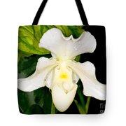 Paphiopedilum Orchid Tote Bag