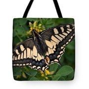 Papilio Machaon Butterfly Sitting On The Lucerne Plant Tote Bag