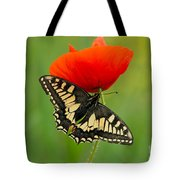 Papilio Machaon Butterfly Sitting On A Red Poppy Tote Bag