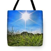 Papyrus In The Sun Tote Bag