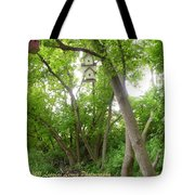 Paradise For Birds Tote Bag