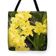 Paradise Orchid  Tote Bag by Sonali Gangane