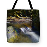 Paradise Whispers  Tote Bag