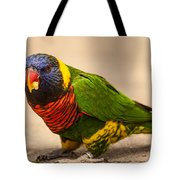 Parakeet With Treat Tote Bag