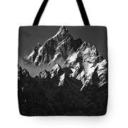 Paramount Tote Bag