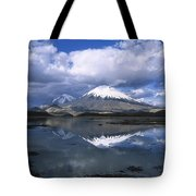 Parincota Lauca National Park Andes Tote Bag