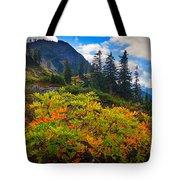 Park Butte Fall Color Tote Bag