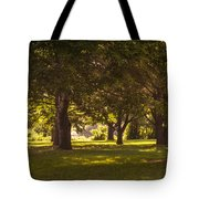 Park By The Rivers Tote Bag