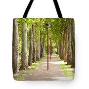 Park Footpath Tote Bag
