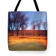 Park In Mcgill Near Ely Nv In The Evening Hours Tote Bag