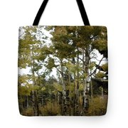 Park It There Tote Bag