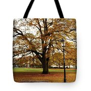 Park Life Tote Bag