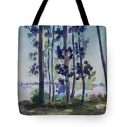 Park On Harvard Two Tote Bag