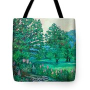 Park Road In Radford Tote Bag