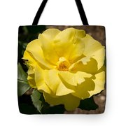Parnell Yellow Rose Tote Bag