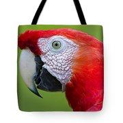Parrot 35 Tote Bag