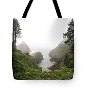 Parrot Rock In The Fog Tote Bag