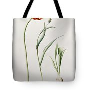 Parrot Tulip Tote Bag by Iona Hordern