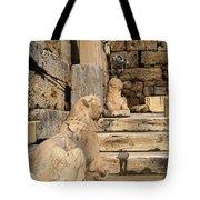 Parthenon 6 Tote Bag