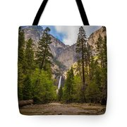 Parting Trees Tote Bag