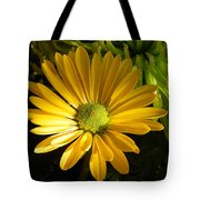 Partly Sunny Tote Bag