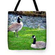 Partners For Life Tote Bag