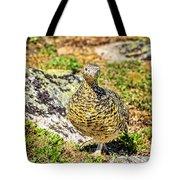 Partridge 1 Tote Bag