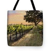 Paso Vineyard  Tote Bag