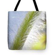 Pasqueflower Stem  Tote Bag