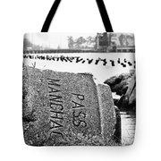 Pass Manchac Tote Bag by Scott Pellegrin