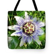 Passiflora Against Green Foliage In A Garden  Tote Bag