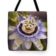 Passiflora Caerulea Tote Bag