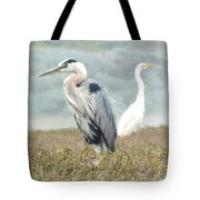 Passing In Opposite Directions Tote Bag