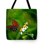 Passion Butterfly Painted Tote Bag