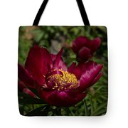 Passion For Red Tote Bag