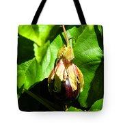 Passion Fruit 10-18-13 By Julianne Felton Tote Bag